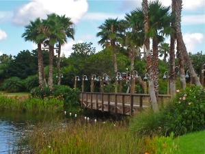 Coronado Spings Landscape