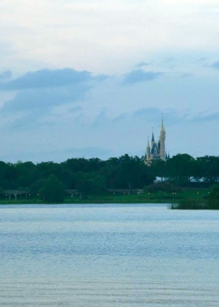 View from Polynesian