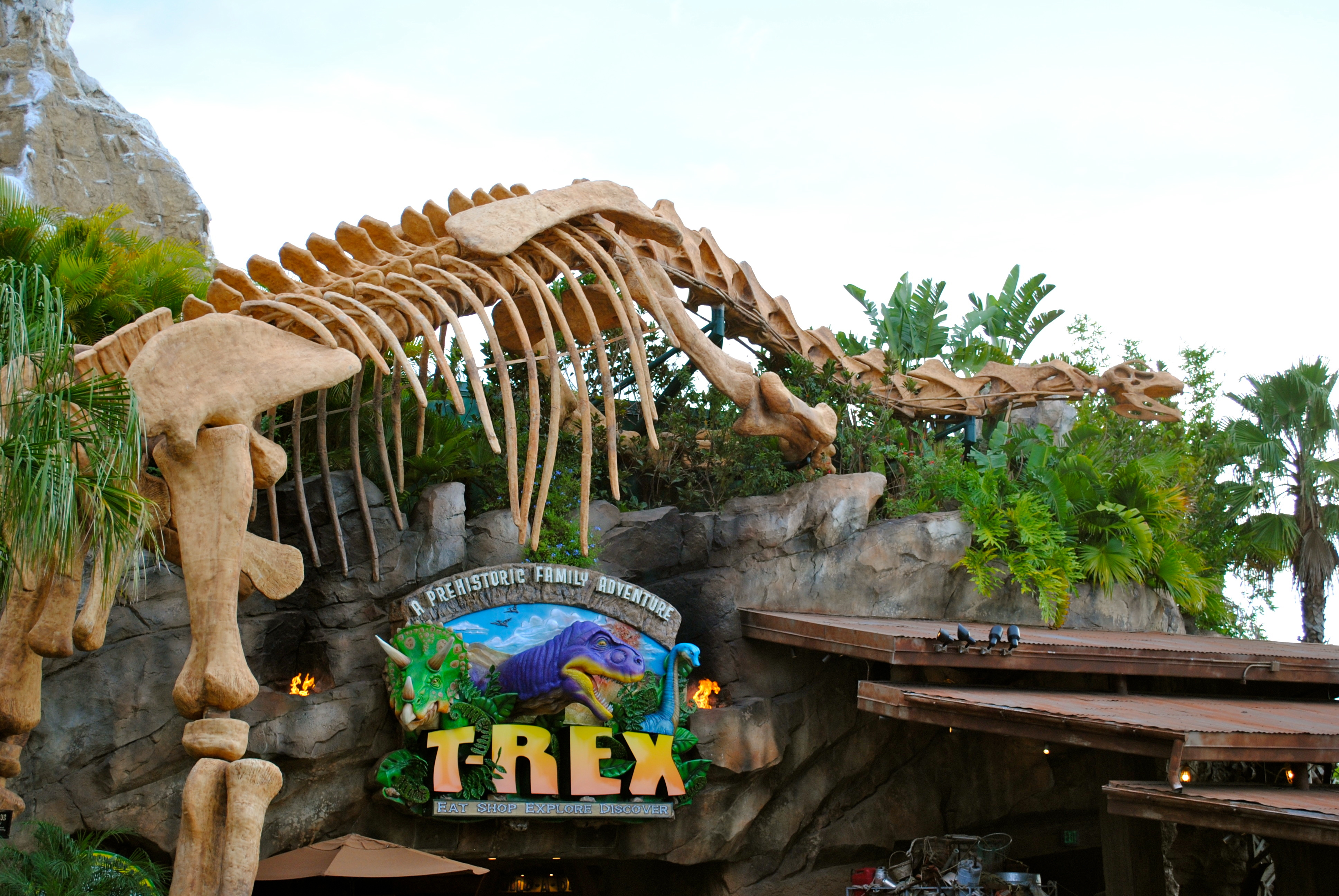 Rainforest Cafe The Walt Disney World Blog