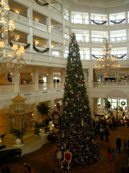 Grand Flo Christmas Tree 2